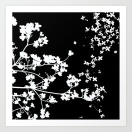 Black Dogwood Art Print