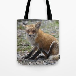 Itchy Fox Tote Bag
