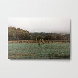 Deer in the Distance Metal Print