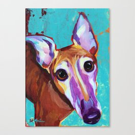 Chester - Colorful Greyhound Canvas Print