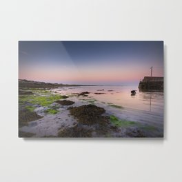 Dog chasing fish in Barna, Ireland Metal Print