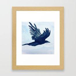 Crow in Flight Framed Art Print