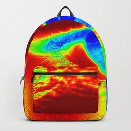 Heat Map, Fun Eye Backpack