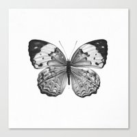 butterfly Canvas Prints featuring Butterfly by Hermes_GC