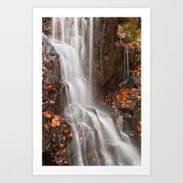 Avalon Falls Art Print