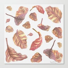 Falling Autumn Leaves Colored Pencil Drawing Autumn Colours Canvas Print