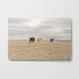Travel Landscape Photograph, Iceland Metal Print
