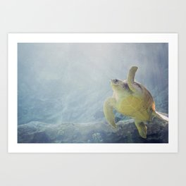 Coasting Turtle Art Print