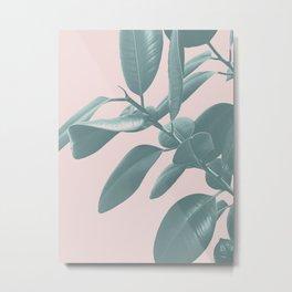 Ficus Elastica #1 #blush #decor #art #society6 Metal Print