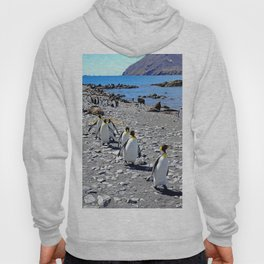King Penguins returning to the colony Hoody