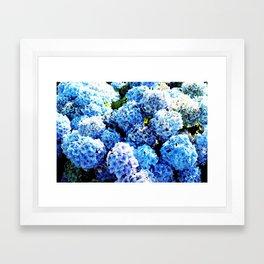Blue flowers all summer  Framed Art Print