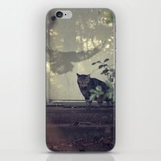 Smitty's revenge iPhone & iPod Skin