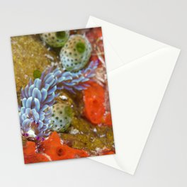 Blue dragon nudibranch with impressive plumage Stationery Cards