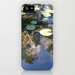 Spot The Turtles iPhone Case