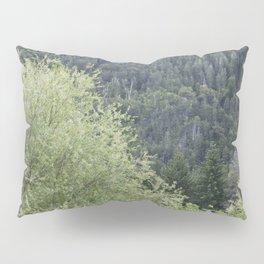 Árboles patagónicos Pillow Sham