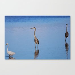 A Singular Fortune Canvas Print