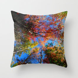 Colorful, Autumn In New Hampshire by OLena Art Throw Pillow