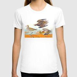 Golden Plover John James Audubon Scientific Birds Of America Illustration T-shirt