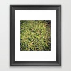 Grass 3 Framed Art Print