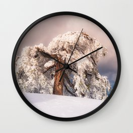 Frost Covered Pine Wall Clock