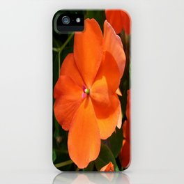 Vivid Orange Vermillion Impatiens Flower iPhone Case