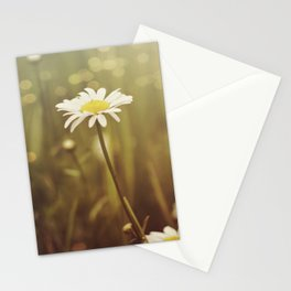 A Daisy Day Stationery Cards