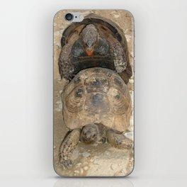 Humorous Mating Tortoises iPhone Skin