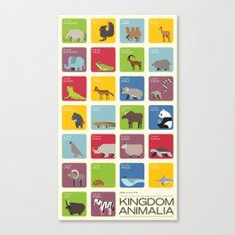 The Kingdom Animalia Canvas Print