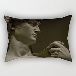 David Rectangular Pillow