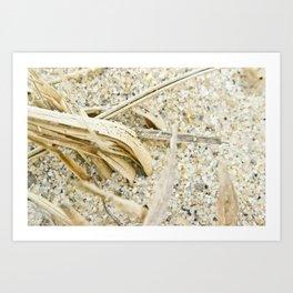 sand macro  Art Print