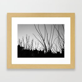 Urban Garden 2 Framed Art Print