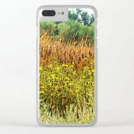 Bands of color Clear iPhone Case
