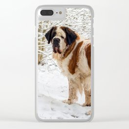 St Bernard dog in the snow Clear iPhone Case