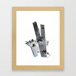 Tritone P Framed Art Print