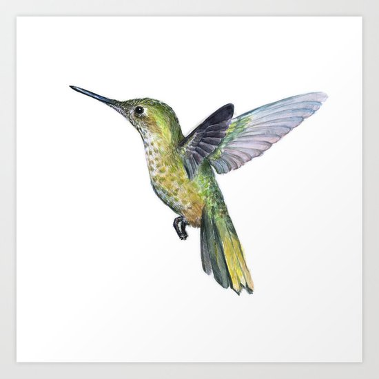 Hummingbird Watercolor Bird Animal Art Print
