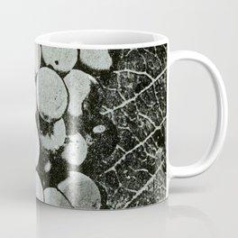Our native grape Coffee Mug
