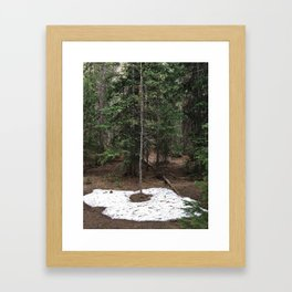 on the trail in breck Framed Art Print