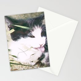 Bad Manners Stationery Cards