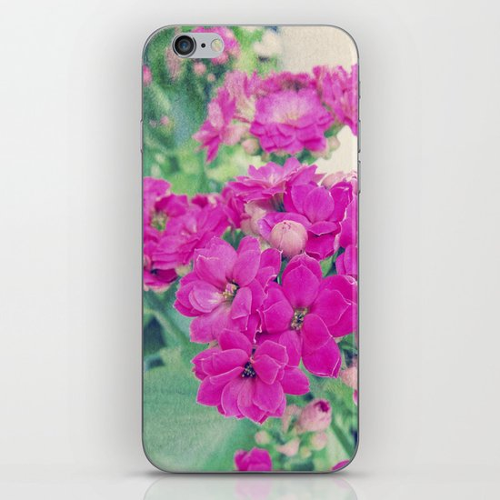 Get Well | Beautiful Rose Like Flowers iPhone & iPod Skin
