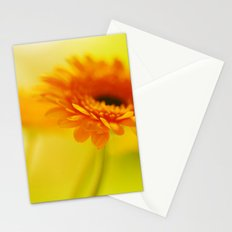 Orange Crush Stationery Cards