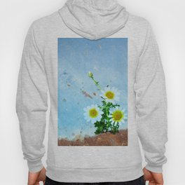 Daisies on rusty metal Hoody