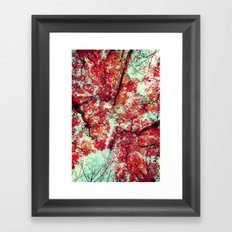 Candied Fall Framed Art Print