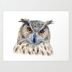 Eage Owl CC1404 Art Print