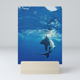 Shark Swimming Mini Art Print