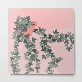 Pink potted ivy Metal Print