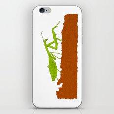 Praying Mantis iPhone & iPod Skin