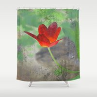 tulip Shower Curtains featuring Tulip by LoRo  Art & Pictures