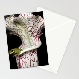 Sarracenia Home Stationery Cards