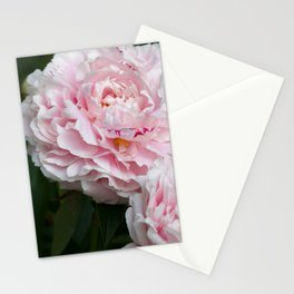 Peony obsession Stationery Cards
