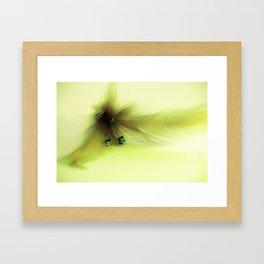 Soft Feather 1 Framed Art Print